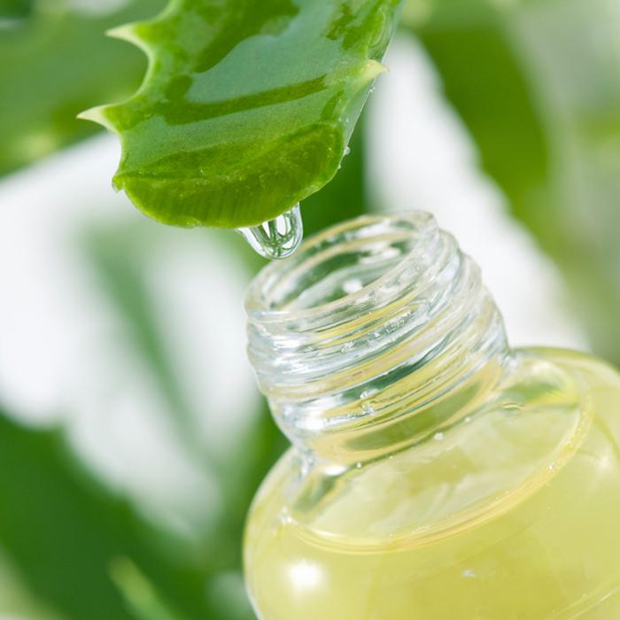 Aloe Vera reduces Hair Shed