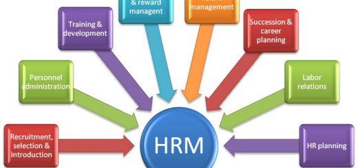 HR professionals
