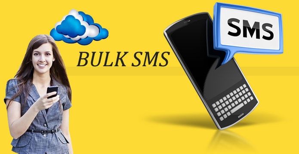 Bulk sms package